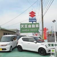 tenoujidousha01
