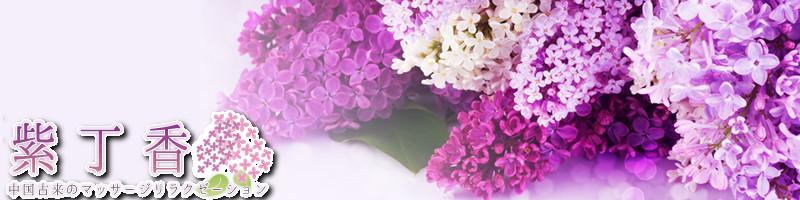 紫丁香-ライラック-